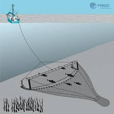 trawl-net